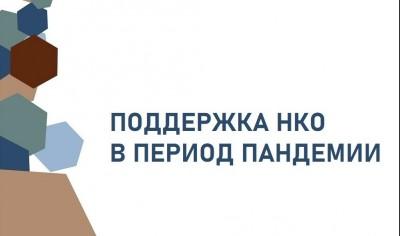 Участие в Общественном совете Департамента образования и науки Курганской области