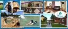 О пользе минеральных вод: опыт Тавды